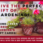 Tudbinks Gift Cards – Special Offer! Also Our HOLIDAY PLANTER Contest!