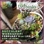 feb-succulent-workshop