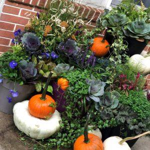 fall-planter-4 (1)