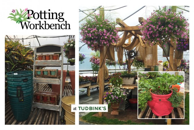 Tudbink's makes potting easy – and provides free soil!