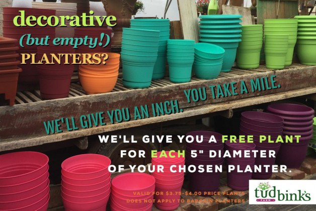 Get FREE Plants for your Planter!