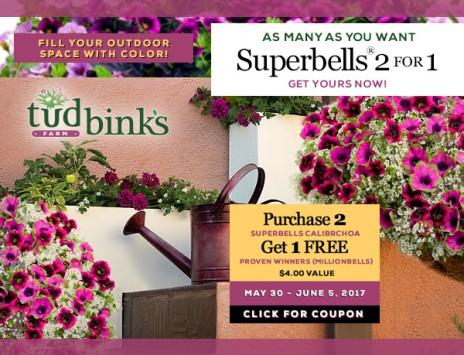 Go WILD with COLOR: Superbells and Supertunias