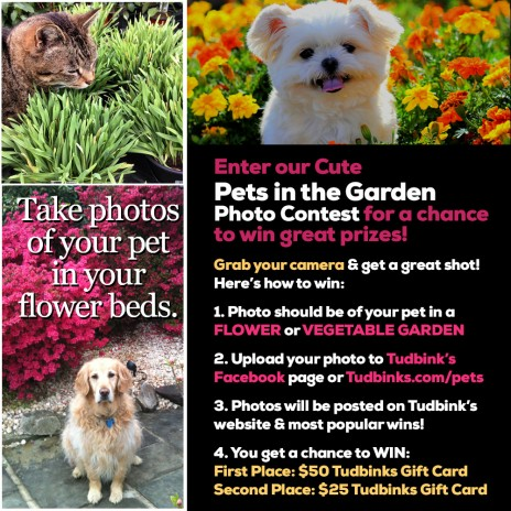 Enter our Cute Pets in the Garden Photo Contest