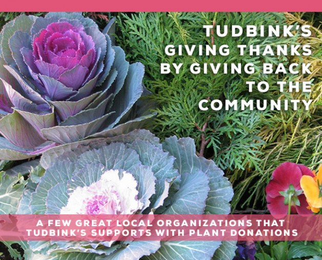 Tudbink's – Giving Back to some Great Organizations