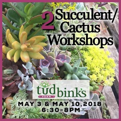 Workshop: TWO Succulent/Cactus Courses