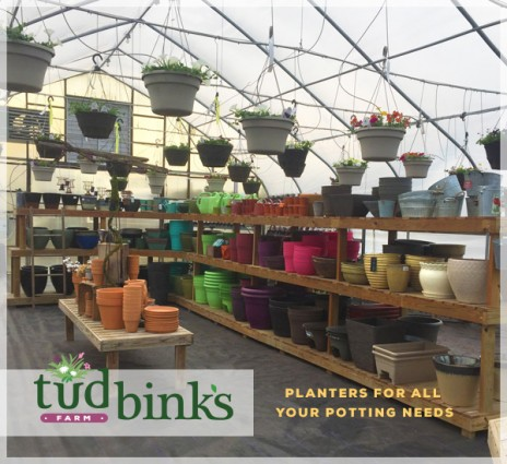 Tudbink's has a Great Offer for Free Potting Soil!