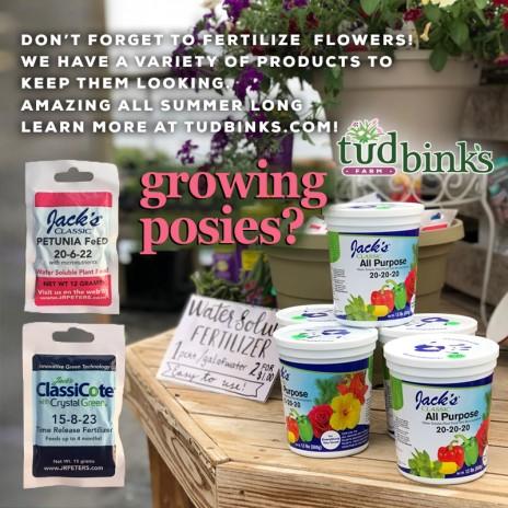 Plant foods and fertilizers – we've got them!