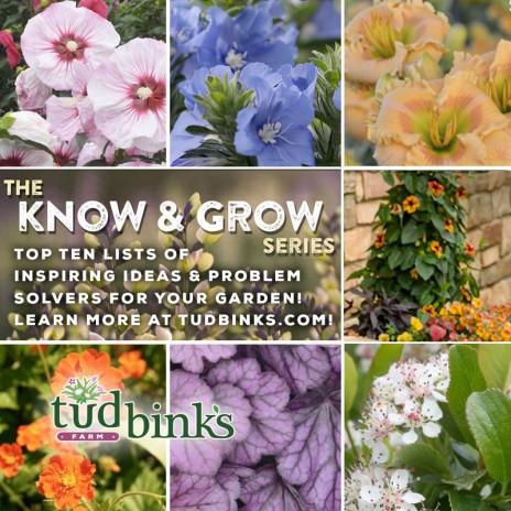 "Tudbink's ""Know & Grow"" Series"
