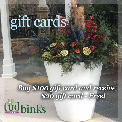 Small Business Saturday – Special  Gift Cards Offer!