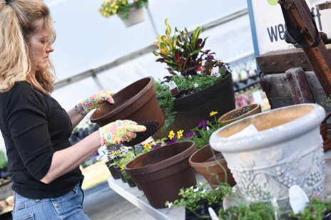 Spring or Summer Planter Workshop