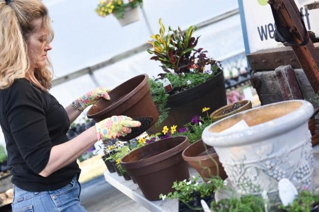 Spring or Summer Planter Workshop