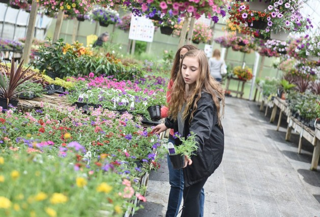 Planter Workshop Especially for Kids