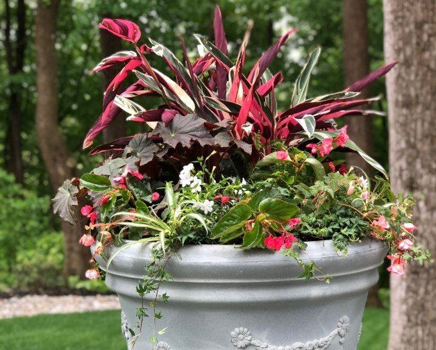 Shade Planter and House Plant Workshop