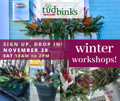 Winter Planter Workshop – November 30 (Class Full)