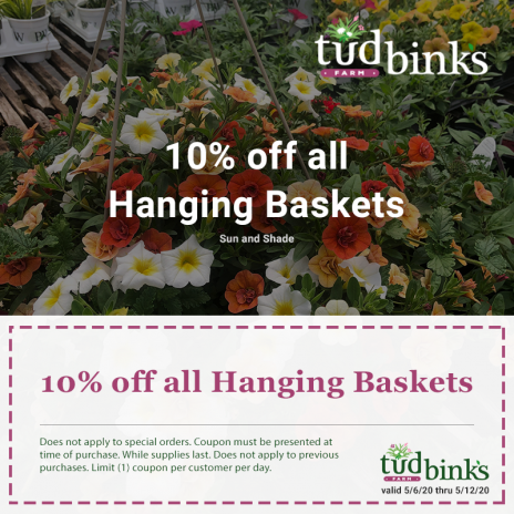 Hanging Baskets Promotion