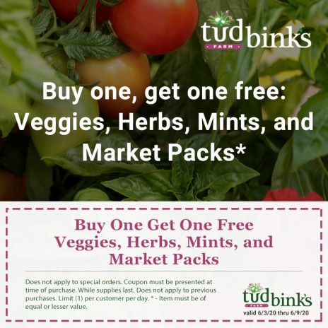 Buy One, Get One Free – Veggies, Herbs, Annual Market Packs