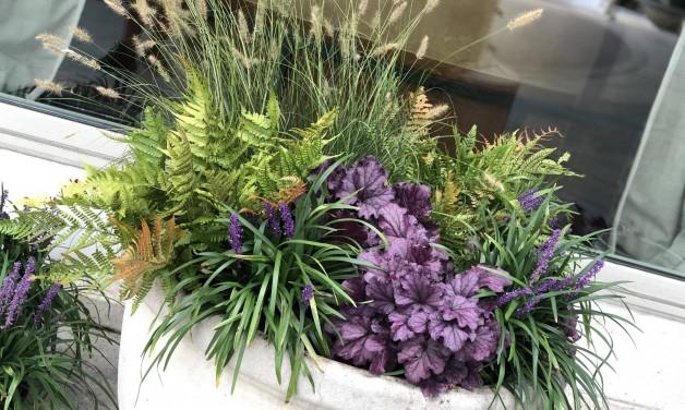 Fall Planter Workshop – September 19