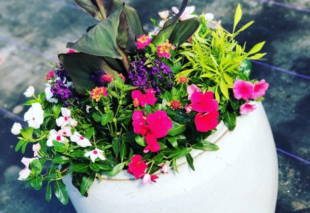 Summer Planter Workshop – May 4