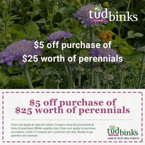 $5 Off Your Purchase of $25 Worth of Perennials
