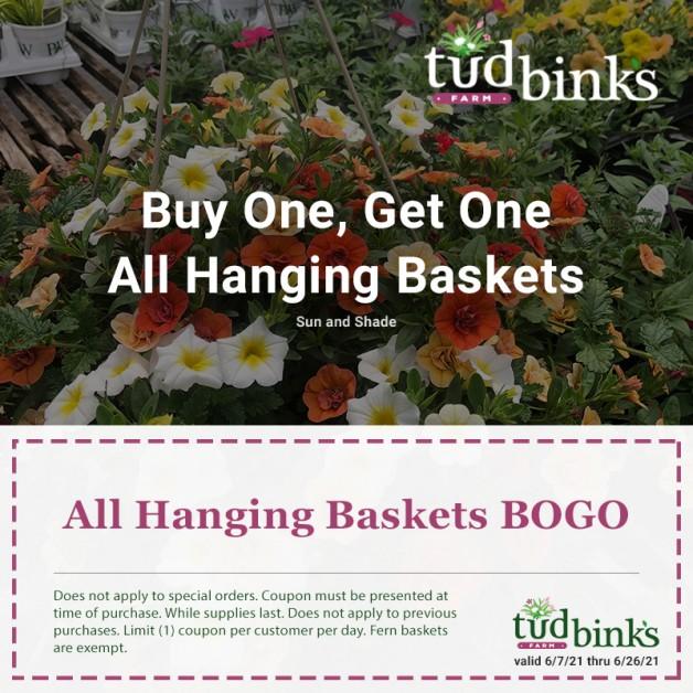 Hanging Baskets Promotion