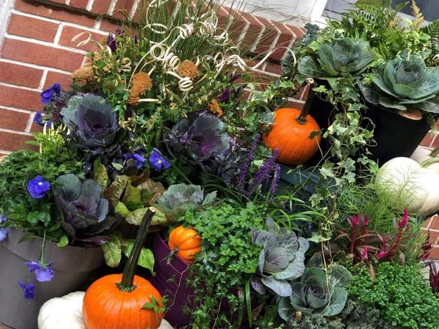 Fall Planter Workshop – September 11